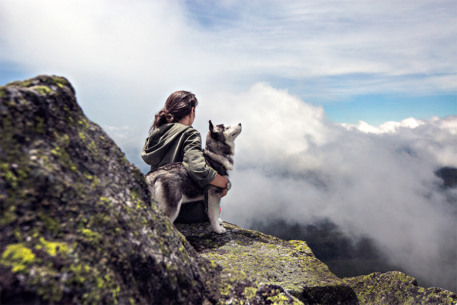 Tips for a Safe and Fun Hiking Adventure with your Dog